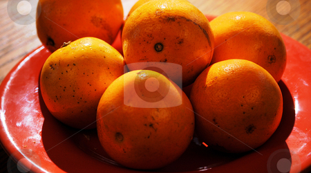 Oranges stock photo, Oranges on a table by Tim Markley