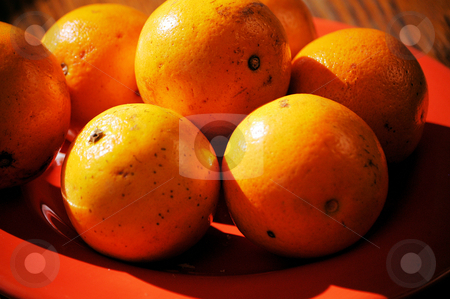 Oranges on a plate stock photo, Oranges on a plate ready to eat by Tim Markley