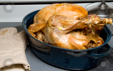 Turkey out of oven stock photo, A hot and delicious freshly cooked turkey. by Robert Byron