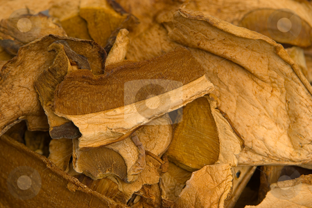 Getrocknete Steinpilze - Dried porcini mushrooms stock photo, Als W?rzzutat zum Kochen - Used as a spice for cooking by Wolfgang Heidasch