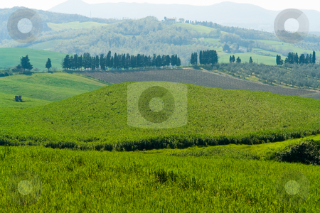 Toskanische Landschaft stock photo, Toskanische Landschaft by Wolfgang Heidasch