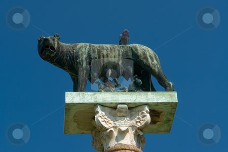 Kapitolinische W?lfin mir Romulus und Remus am Dom zu Pisa, Toskana stock photo, Kapitolinische W?lfin mir Romulus und Remus am Dom zu Pisa, Toskana by Wolfgang Heidasch