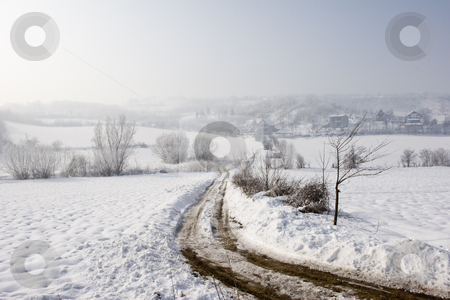 Misty winter view of farm track in the snow stock photo, A misty winter view of farm track in the snow by Mark Yuill