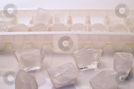Ice Cubes stock photo, Loose ice cubes out of the tray by Richard Nelson