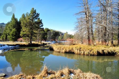 Sierra Meadow In Late Autumn stock photo, Meadow in the California Sierra Nevada mountians by Lynn Bendickson