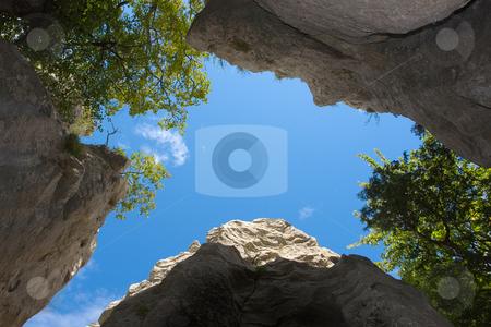 Bois de Paiolive, S?dfrankreich stock photo, Zwischen den Felsen stehend, Blick himmelw?rts by Wolfgang Heidasch