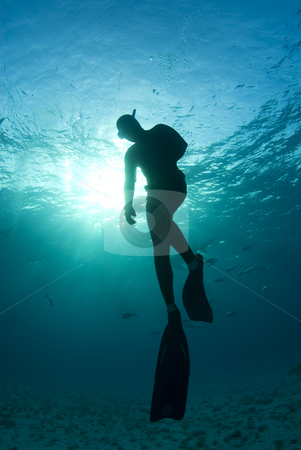 One Last Look stock photo, A freediver, silhouetted by the sun shining through from the surface, takes one last look as he begins his ascent to the surface by A Cotton Photo