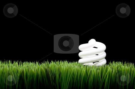 Compact fluorescent light bulb on grass stock photo, A glowing compact fluorescent light bulb on grass with space for copy on the black backgroung by Vince Clements