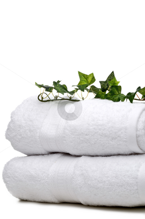 Green vine on white towels stock photo, Green vine on white towels by Vince Clements