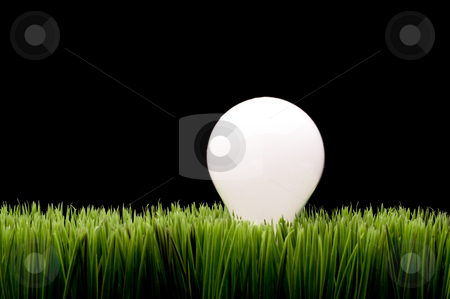 Incandescent bulb on green grass stock photo, A glowing incandescent bulb on green grass with space for copy on the black background by Vince Clements