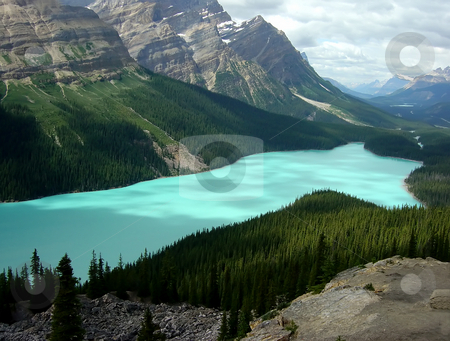 Lake Peyto stock photo, Beautiful Lake Peyto in Banff National Park in Alberta Canada. by Chris Hill