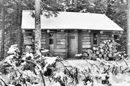 Cabin stock photo, cabin in the woods during the winter,picture shown in black and white by Tim Markley