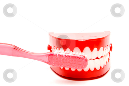 Dental Hygiene stock photo, A toothbrush and set of chattering teeth in a glass. by Robert Byron