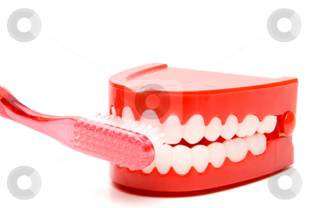 Brushing Teeth stock photo, A toothbrush brushing a set of chattering teeth. by Robert Byron