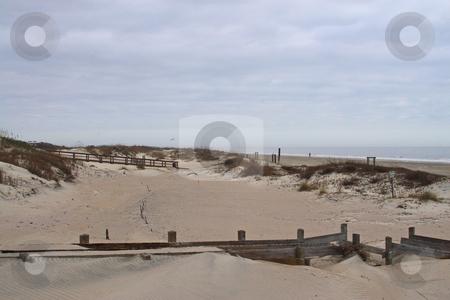 Tybee Island  stock photo, Tybee Island Georgia  protected sand dunes by Jack Schiffer
