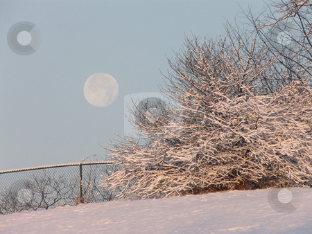 Morning Moon and Snow stock photo, Full moon setting over snow-covered land as the sun rises. by Kathy Piper