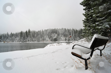 Bench and Lake In Winter stock photo, A sitting bench covered with snow in early winter overlooking a lake. by Lynn Bendickson