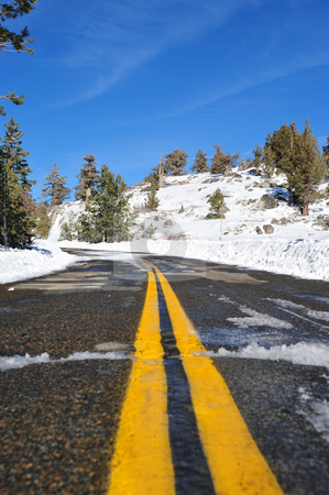 Mountain Road stock photo, Sierra mountain road and yellow dividing line with trees and snow on a clear day, image contains GPS location information by Lynn Bendickson