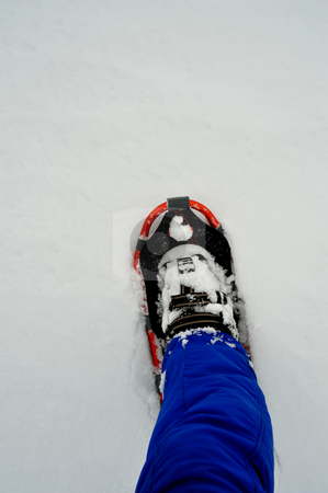 Single Snow Shoe stock photo, One snowshoe and leg with snow clothing on by Lynn Bendickson