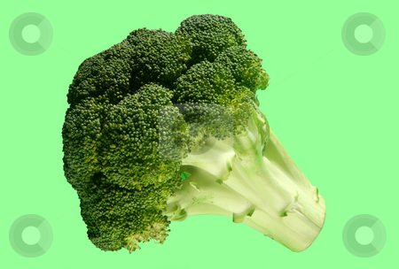 Broccoli on a green background. stock photo, Broccoli on a green background. by Stephen Rees
