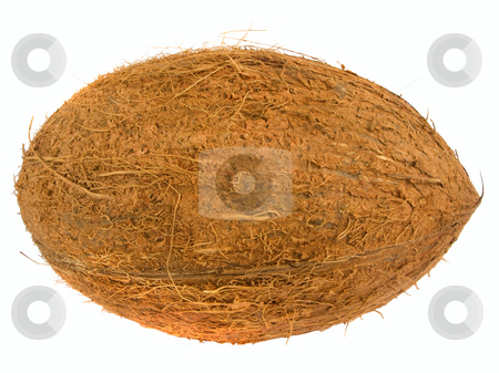 A coconut isolated over a white background. stock photo, A coconut isolated over a white background. by Stephen Rees