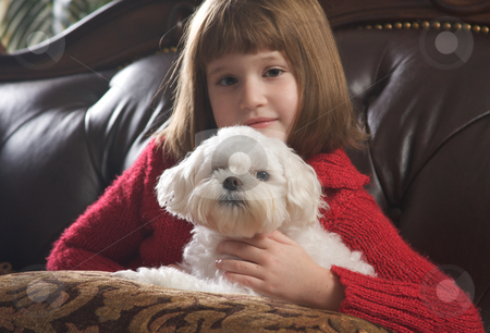 Young Girls with Her Maltese stock photo, Young Girls Poses with Her Maltese Dog by Andy Dean