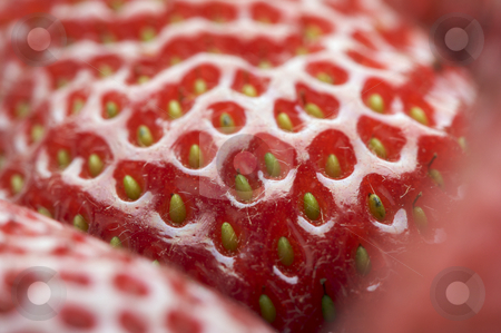Macro of Strawberry stock photo, Macro of Strawberry Series by Andy Dean