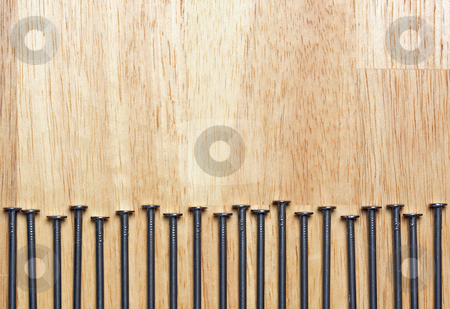 Macro of Nails on Wood stock photo, Macro of Nails on a Wood Background. by Andy Dean