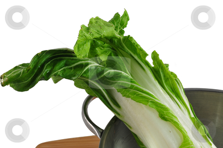 Bok Choy stock photo, Bok Choy in a collinder on a light colored background by Lynn Bendickson