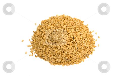 Sesam (Sesamum indicum) - Sesame stock photo, Der Sesam (Sesamum indicum) ist eine Pflanzenart aus der Familie der Sesamgew?chse (Pedaliaceae). - Sesame (Sesamum indicum) is a flowering plant in the genus Sesamum. by Wolfgang Heidasch