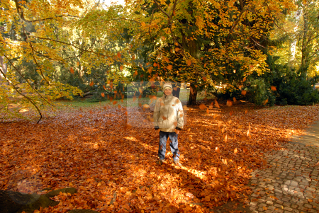 Teenboy in park stock photo, A young boy walking in the park in autumn by Joanna Szycik