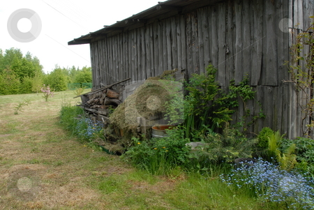 Shed stock photo, Old wooden shed at the back of front by Joanna Szycik