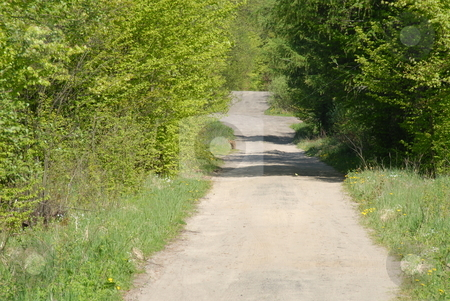 Forest path stock photo, Path in the forest, sunny, lovely day by Joanna Szycik