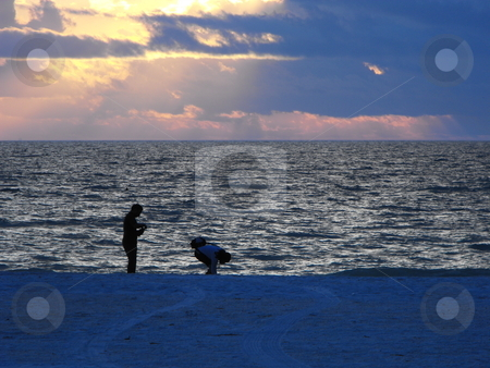 Beach Combers stock photo, No matter what coastline you visit, there are always people searching the shoreline for treasures.  This particular stretch of shoreline, with expected beach combers,  is on Florida's gulf coast near St. Petersburg. by Dennis Thomsen