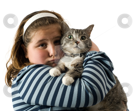 Child and Cat stock photo, Young girl giving her pet cat a big hug, isolated against a white background by Richard Nelson