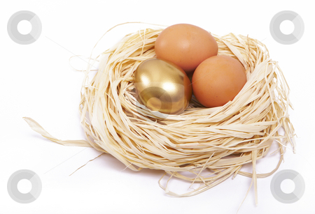 Golden egg finance concept stock photo, Golden egg shines in a nest by Gary Cookson