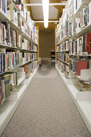 Library Aisles stock photo, The aisles in a public library with shelves full of books. Any legible book titles or cover artwork have been blurred for copyright reasons. by Todd Arena