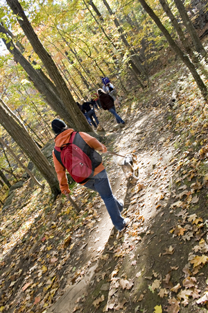 Hiking stock photo, A young woman walking her dog through the woods with some friends. by Todd Arena