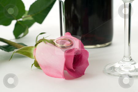 Marriage Proposal stock photo, An engagement ring resting on a rose, shot on a tabletop setting by Richard Nelson