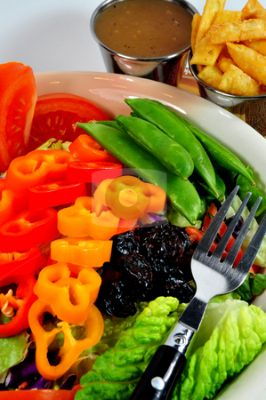 Salad stock photo, Salad with sweet peppers, snap peas, lettuce and other assorted vegetables with orange sesame dressing by Lynn Bendickson
