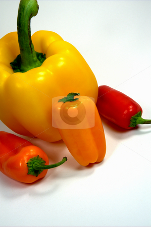 Colorful Sweet Peppers stock photo, Different colored sweet and bell peppers on a light colored background by Lynn Bendickson