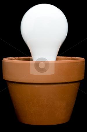 Incandescant bulb in a planter stock photo, A glowing incandescant bulb in a planter by Vince Clements