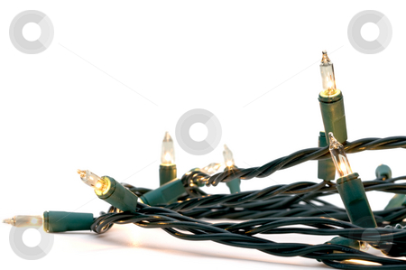 Clear white holiday lights stock photo, Clear white holiday lights with green cables by Vince Clements