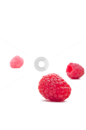 Three raspberries on white stock photo, A horizontal view of three red raspberries on white.