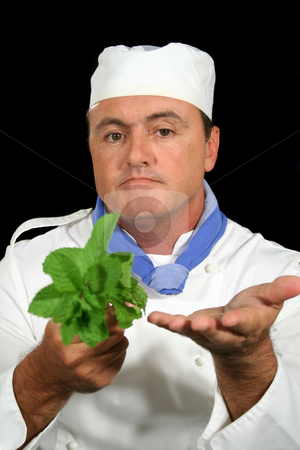 Herb Chef 2 stock photo, Chef showing fresh mint to a customer. by Brett Mulcahy