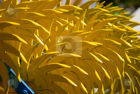 Yellow harrow stock photo, Close up of a yellow harrow by Matteo Malavasi