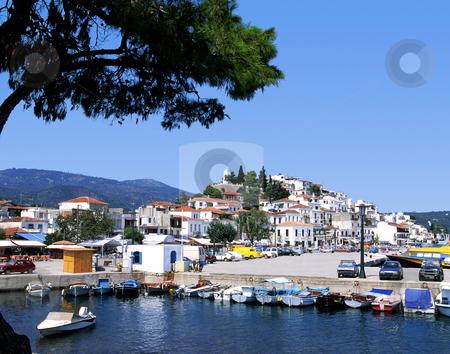 Skiathos port stock photo, The port on the Greek island of Skiathos by Paul Phillips