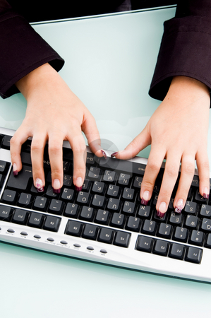 Professional fingers working on keyboard stock photo, Professional fingers working on keyboard with white background by Imagery Majestic