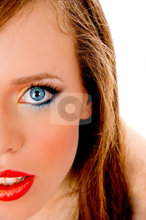 Half length view of model looking at camera stock photo, Half length view of model looking at camera against white background by Imagery Majestic