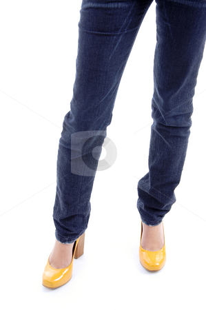 Front view of legs of woman stock photo, Front view of legs of woman on an isolated background by Imagery Majestic